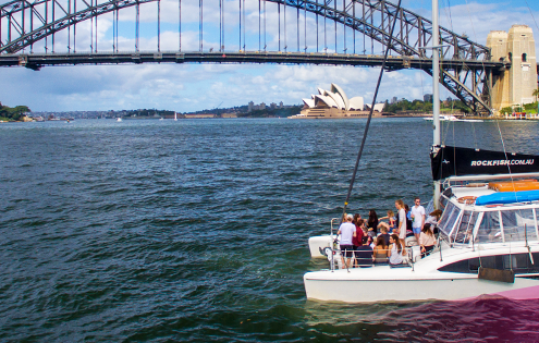 Rockfish Catamarans 10 facts Sydney Harbour